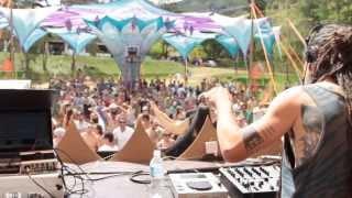 Rica Amaral - Kumbha Celebração Psicodélica (2013)