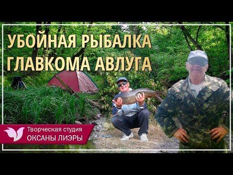 Убойная рыбалка ГЛАВКОМА АВЛУГА под песню Вилли Токарева