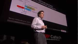 Drugs, dopamine and drosophila: A fly model for ADHD? David Anderson at TEDxCaltech