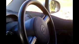 Boxer Dog Boysey Driving Me Car
