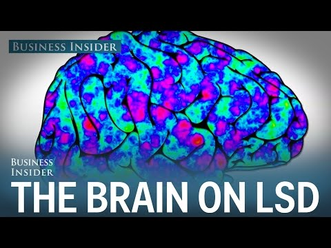 Here's what happens to the human brain on LSD