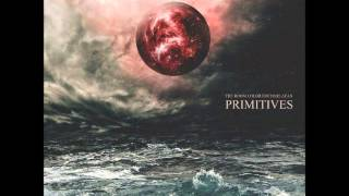 PRIMITIVES - The Room Colored Charlatan