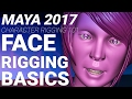 MAYA 2017 CHARACTER FACE RIGGING TUTORIAL - BASIC JOINTS AND SKINNING