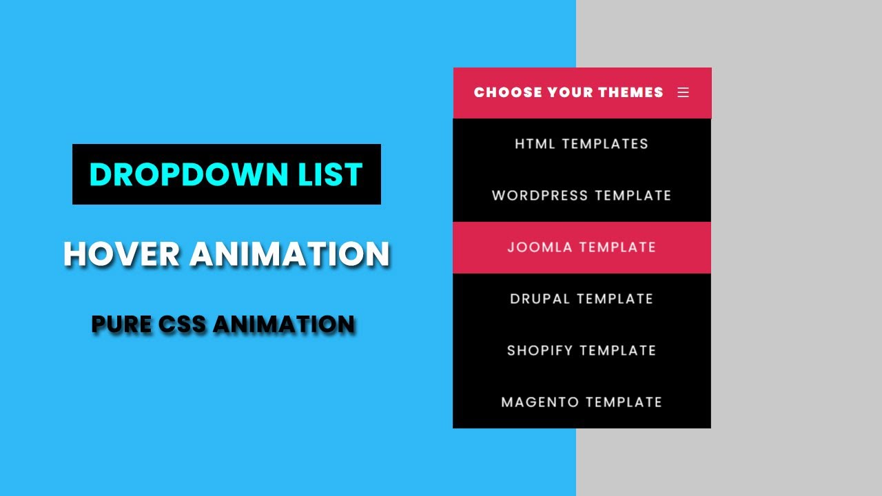 Dropdown List Hover animation