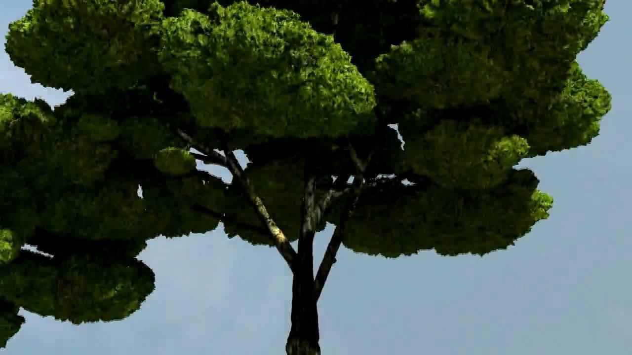 Procedural Voxel Trees