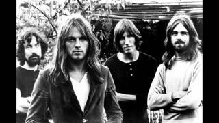 Pink Floyd - Fearless (You'll Never Walk Alone) (with lyrics)