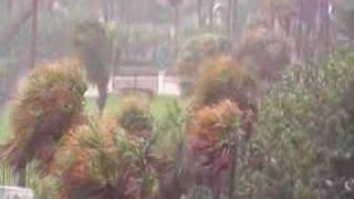 Rain, glorious rain
