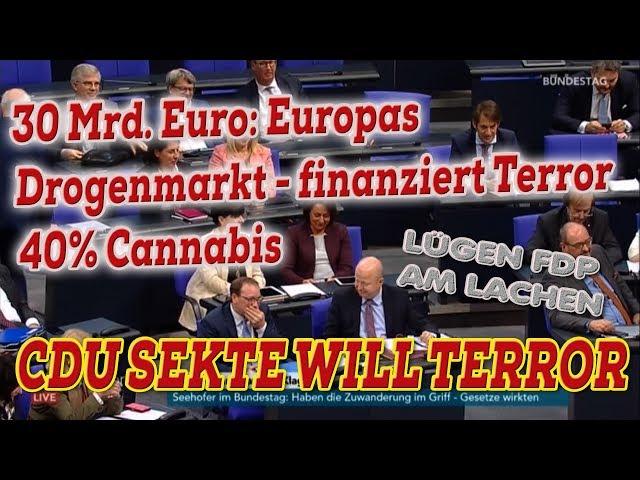 LÜGEN FDP AUF STIMMENFANG ZU CANNABIS - FDP KOLLEGEN LACHEN - Bundestag live 28.11.2019