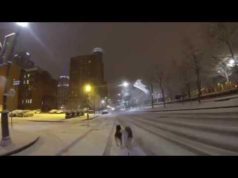 Downtown Pittsburgh Dog Sledding 2015