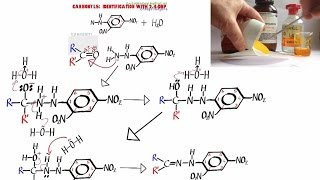 organic 2 lab report aldehydes A completed lab report that explains the process of determining  aldehydes and  ketones are organic compounds consisting of the carbonyl functional group   table 2: list of positive and negative tollen's reagent tests.
