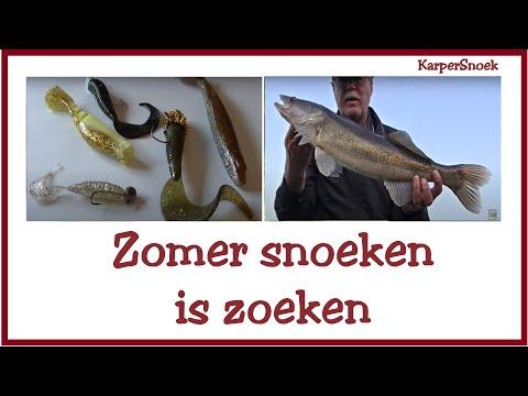 nachtvissen karper tips to lose weight
