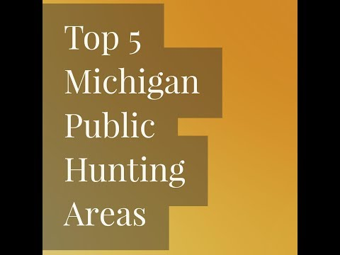 Top 5 Michigan Public Hunting Areas