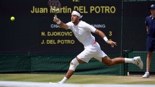 Juan Martin Del Potro discusses semi-final defeat at Wimbled
