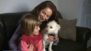 thrown away dog saves little girl s life