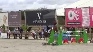 Baco - 2* GP Vilamoura - 9 yo - Tangelo x Nabab