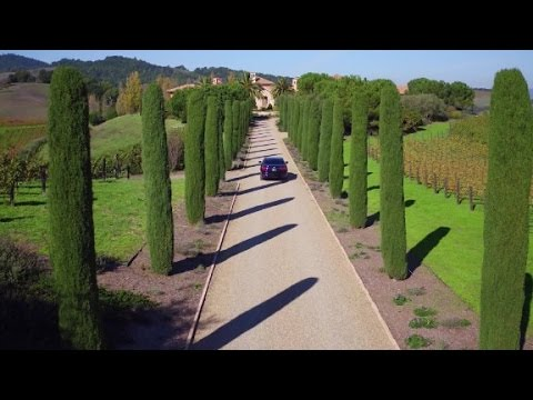 Indulge yourself in Napa Valley
