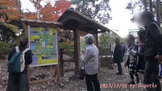 Video Japan Trip 2013 Tokyo  Autumn leaves Maple in Rikugien Garden 1353 download MP3, 3GP, MP4, WEBM, AVI, FLV Agustus 2018