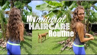 My || ALL NATURAL || Haircare Routine