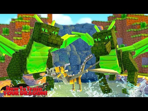 HOW TO TRAIN YOUR DRAGON  A NEW DRAGON ARRIVES? 42 w Little Lizard