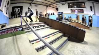 Birdhouse Skate Visit - Dublin 2013