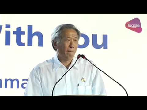 What will happen if there's no PAP govt, PAP's Ng Eng Hen asks