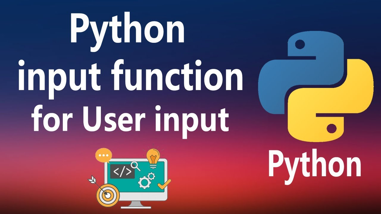 How to Get The User Inputs From Input Function in Python