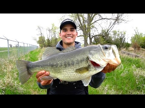 Catching GIANT Bass on Jigs - Spring Bass Fishing