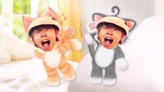 キヨのネコトモ オリジナルOP集