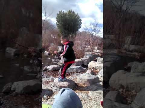 Trout Fishing Albuquerque