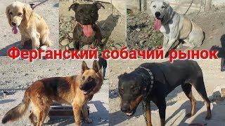 ФАРОНА ИТ БОЗОРИ |  Ферганский собачий рынок