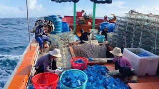 Tập đoàn rập ghẹ Quảng Bình ra khơi tiến tới đảo Bạch Long Vỹ - Dân Biển