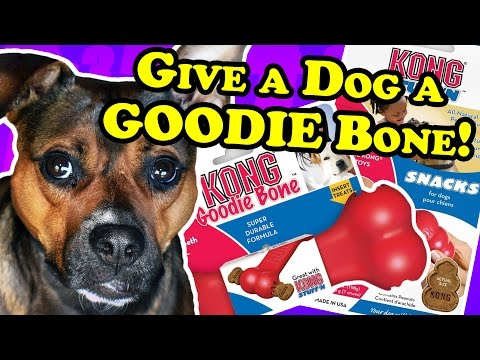 "how-""good""-is-this-kong-goodie-bone?---dog-toy-reviews-