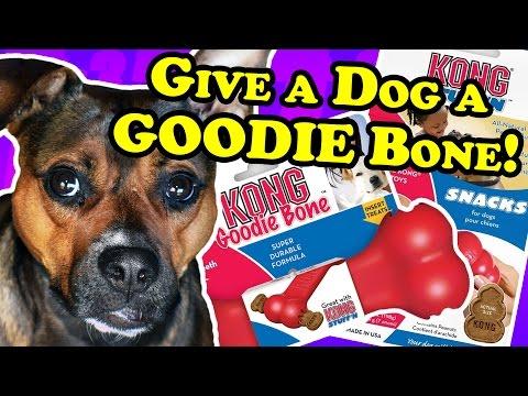 2 Pack Kong Dog Toys Goodie Bone