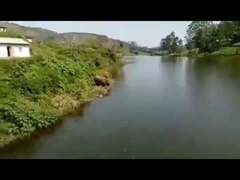 Elephant swimming in megamalai dam.