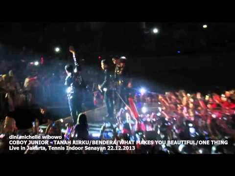 COBOY JUNIOR - Opening Medley WHAT MAKES YOU BEAUTIFUL/ONE THING live in Jakarta 2013