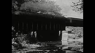 Suicide (Alan Vega & Martin Rev) - Damn Rain Damn Train