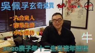 (中文字幕)【全集】2020庚子年十二生肖流年運程︱吳佩孚師傅主講《玄異怪談》
