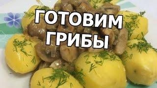 Как приготовить грибы шампиньоны. Рецепт блюда от Ивана!