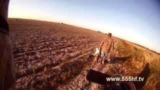 Охота. Охота 2013. Видео охота. Смотреть охота. Оружие. Охотничьи ружья. Ружьё. Охота на гуся. Гуси.