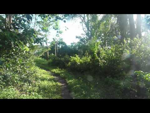 Hamilik Okulu - Free African Foundation - Sierra Leone