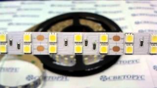 видео Самая яркая светодиодная лента белого свечения SMD 5050 LED 120 24V