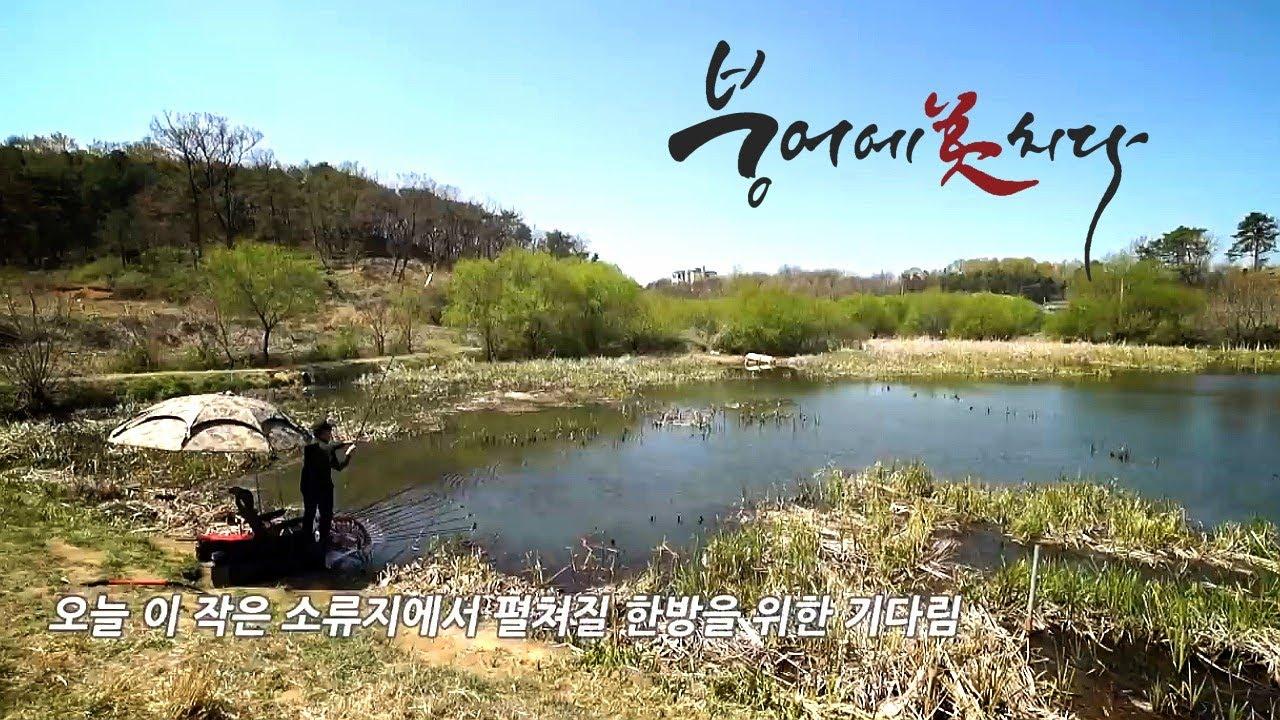 [94화] 붕어에미치다 - 예천소류지 경북 예천군 붕어낚시