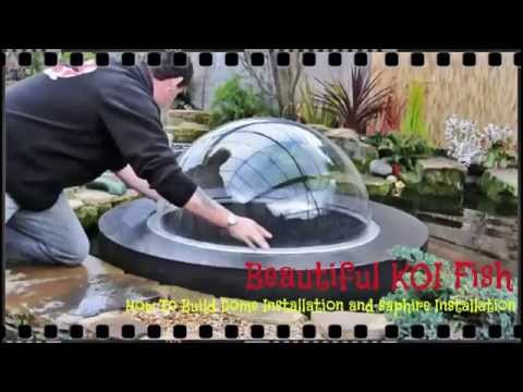 Beautiful KOI Fish -  How To Build Dome  And Saphire Installation