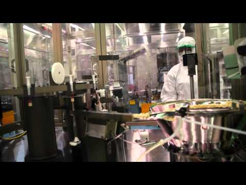 Vaccine production process at BIVI