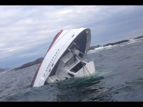 5-dead,-1-missing-after-whale-watching-boat-sinks