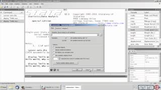 Quick tour of the Stata® interface