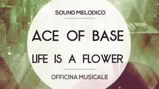 Скачать Instrumental Ace Of Base Life Is A Flower