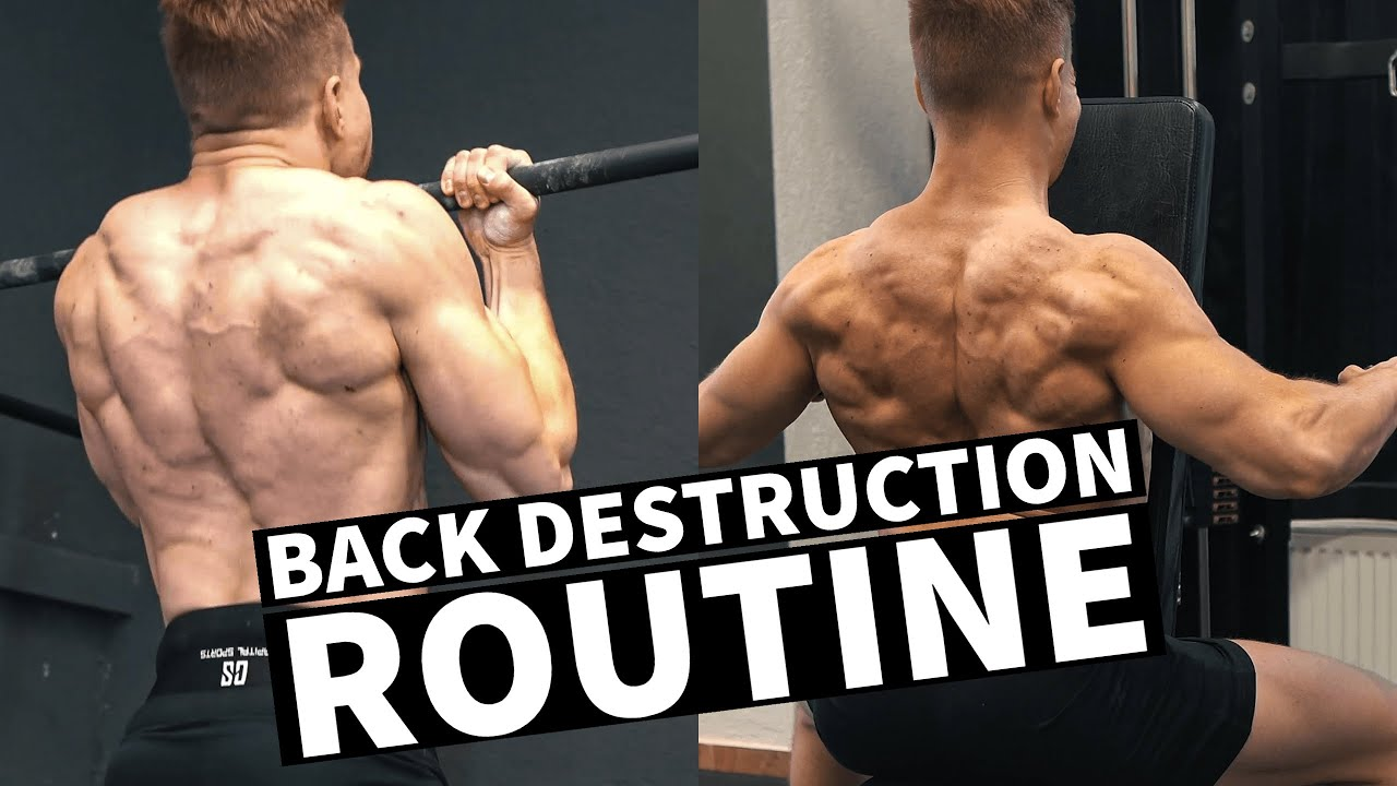 BACK DESTRUCTION || PULL DAY WITH FRONT LEVERS, WEIGHTED CHIN UPS & MUCH MORE!