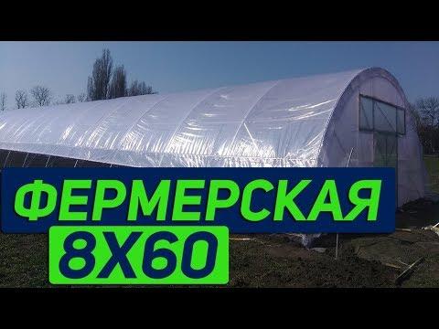 """видео: Фермерская теплица  с системой """"туман"""" в работе"""