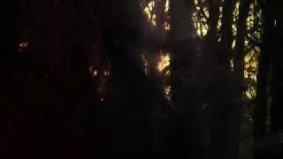 Masheen - Vertigo